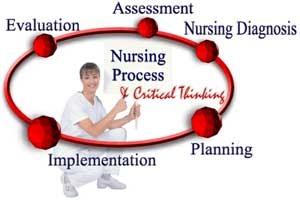 24 Items NCLEX Exam: Nursing Process