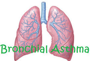 15 Items Broncheal Asthma Exam